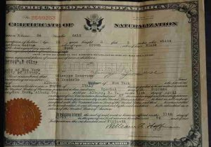 政府発行のライセンス